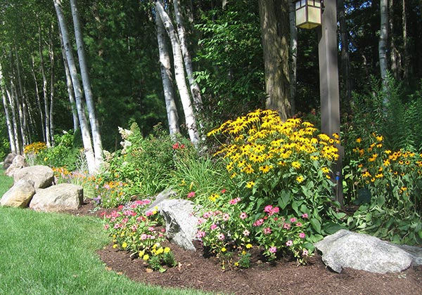 Flower bed with trees, rocks and bright flowers