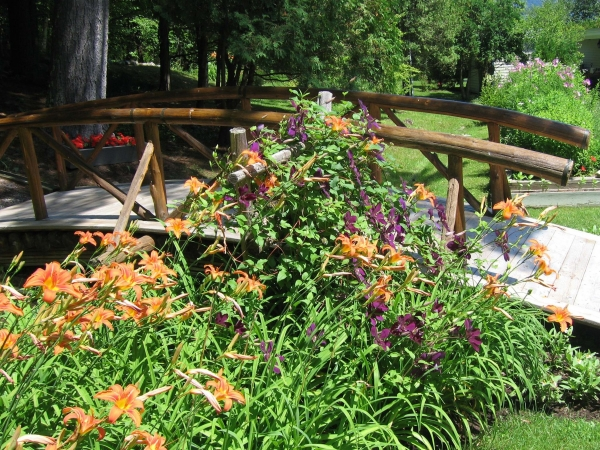 Small bridge with day lilies