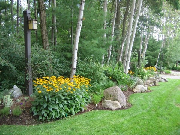Landscaped yard with yellow flowers and trees