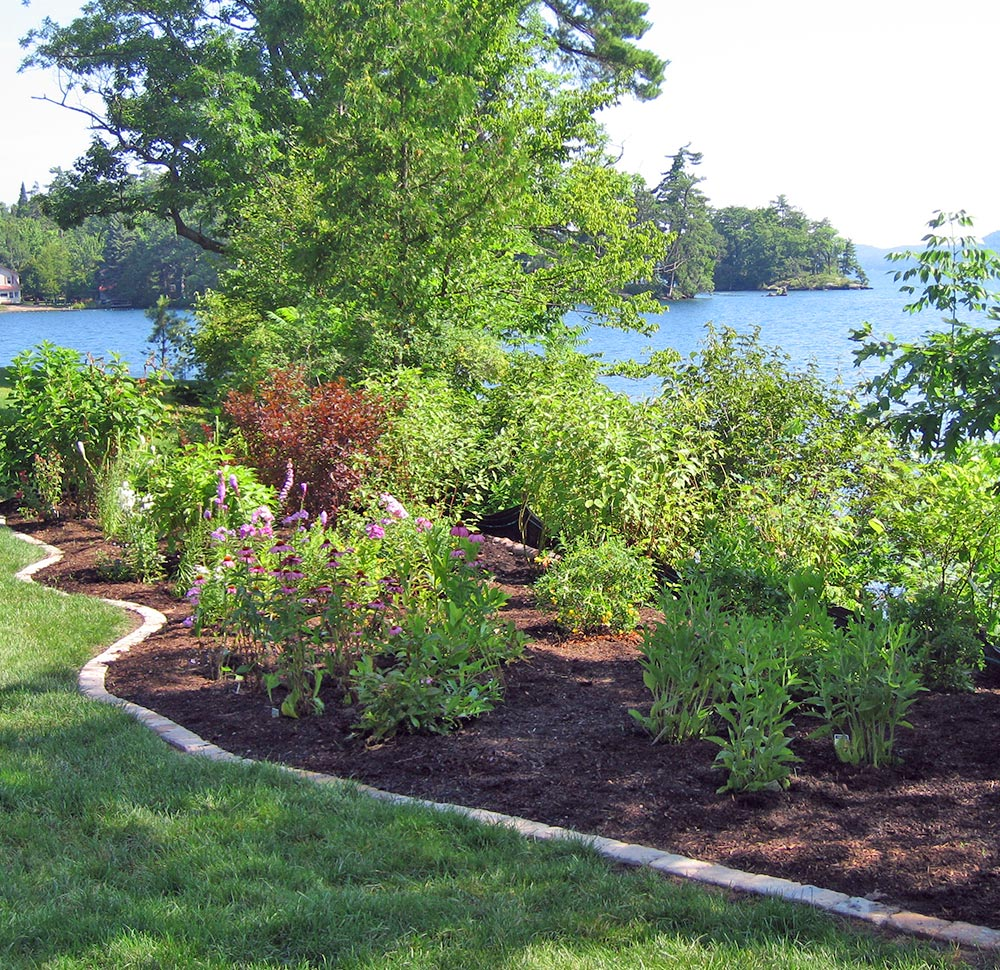 Flower beds on edge of lake
