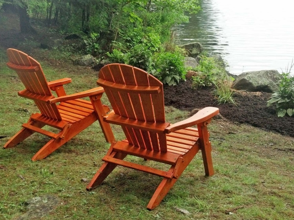 Adirondack chairs next to native plants lake side