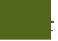 New York State Certified Nursery & Landscape Professional Logo