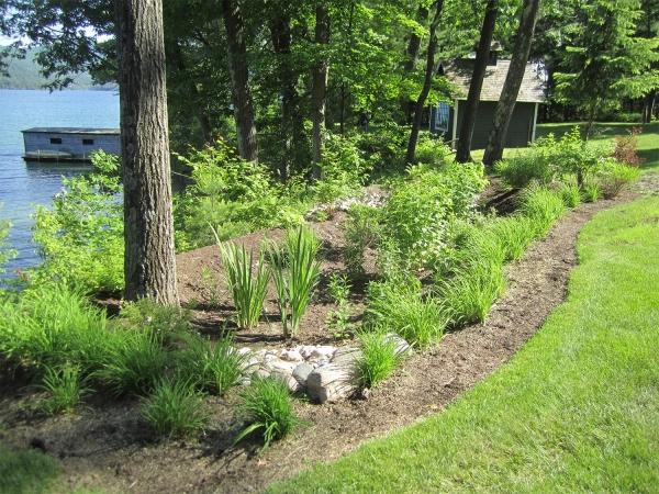 lakeside rain garden