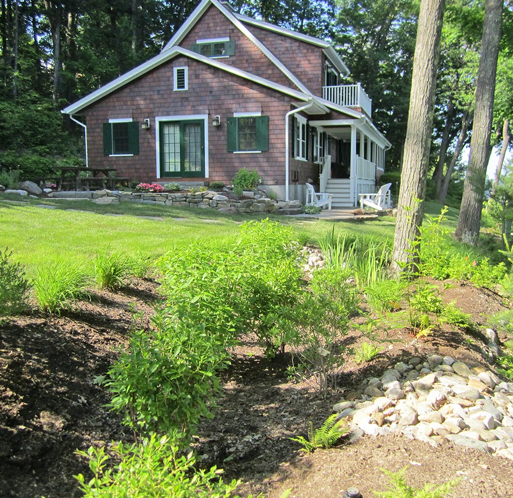 Plantings in front a lakefront home prevent stormwater runoff