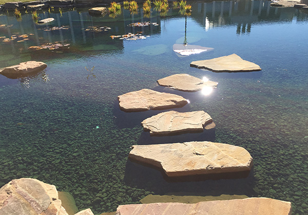 Stepping stones in a pond with shimmering sunlight